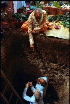 Srila Prabhupada, Radhe Krishna, Black Sheep, Spiritual Life, Hinduism, Hare, Spirituality, London, Painting