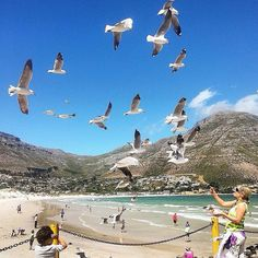 "Check out more sweet pics like these, who made them, and the stories behind them: instagram.com/capetownmag. Are you on Instagram? Tag one of your great pics with#CapeTownMag and we might just feature your image. The picture of the week for the winning #capetownmag feature!  ""The wind beneath the wings."" Featuring @raeeq11"