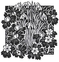 Celia Hart: 'Snowdrops and Winter Aconites'