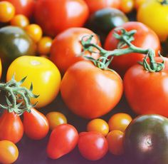 9 delicious recipes for summer tomatoes