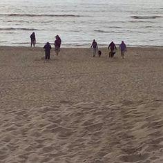 A strandy family