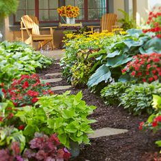 You can coax a surprising amount of color out of a shade garden. Choose plants that fit your conditions and enjoy the view from a relaxing Adirondack chair. Traditional shade favorites such as hosta, coralbells, coleus, and impatiens do the heavy lifting in the shadiest areas under the trees. Farther from the canopy, a few extra hours of sunlight each day make it possible to include black-eyed Susan and geranium.