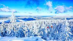 Believe it or not. Dieses Bild ist eine halbe Stunde von Bayreuth entfernt entstanden.  Das Fichtelgebirge präsentiert sich aktuell als Winterwonderland. Die Wintersportbedingungen sind exzellent. Wer war schon auf der Piste oder in der Loipe?  #bayreuth #fichtelgebirge #winter #winterwonderland #igtravel #travel #tlpics #besteuropephotos #instasnow #instaweather #ochsenkopf  Danke @andreas.munder für das tolle Bild