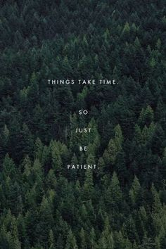 'Things take time. So just be patient.' via levensblogger #Patience