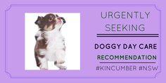 Pet owner seeking #doggydaycare #reviews http://petstayadvisor.com.au/ #KINCUMBER #NSW