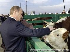 The 24 Cutest Pictures Of Vladimir Putin With Animals