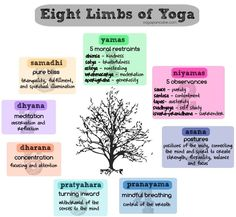 8 limbs of yoga. Reiki & yoga go hand in hand