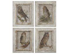 Beautiful set of owl prints.  Owls Framed Art Set of 4