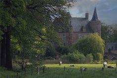 Ligging: ten noorden van de Zuid-Willemsvaart tussen Heeswijk en MiddelrodeOpmerkelijk: maar liefst 5 kilometer lanen Je proeft hier de band tussen kasteel... Trunks, Plants, Flora, Plant, Planets
