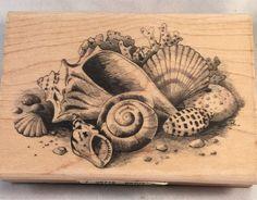 Check out Inkadinkado Seashells Rubber Stamp Set Crafts Cards Scrapbooks New https://www.ebay.com/itm/132150434060 @eBay