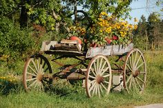 Massachusetts farm scenes: an old wooden wagon full of flowers by Chris Devers, via Flickr