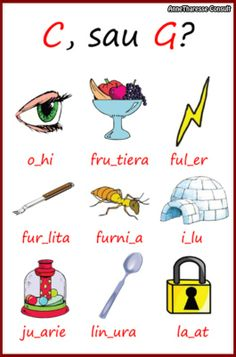 Dyslexia, Grade 1, Language, Classroom, Education, Learning, School, Blog, Rome