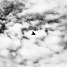 Extraordinary Black and White Photography by Benoit Courti