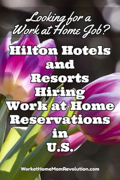 Hilton Hotels and Resorts is hiring work at home reservations agents in the U.S…