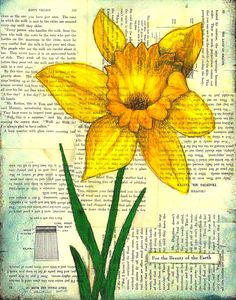 new spring paintings....daffodil
