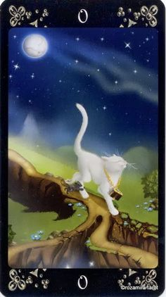 The Fool - Black Cats Tarot - rozamira tarot - Picasa Web Albums