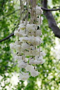 Floral chandelier.  It lookes like they cut the flower down and then spun a twine like attachment to them.  I wonder if vine would hold up to the weight? Maybe add a gentle grape vine wreath to offer some width and some tasteful crystals (?)...