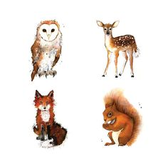 Set of 4 8 x 10 inch woodland creature prints for the price of 3 - Fox, Barn Owl, Deer and Squirrel - Woodland Creatures collection