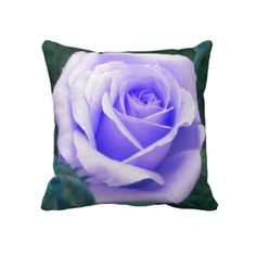These gorgeous pillows made by single mothers at American Mojo and sold through Zazzle... You can design your own or pick one of the thousands... #purple #Rose #throw #pillow