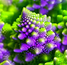 #Fractal art #Purple & #green