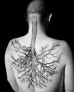"Out of Step Books Publishing on Instagram: ""Check out this rad #tree #lungs…"