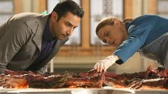 Watch the latest episodes of Bones
