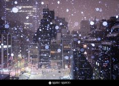 A Snowy Night in Kyobashi, Tokyo | Flickr - Photo Sharing!
