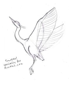 How to draw a heron step 3 Flying Bird Drawing, Crane Drawing, Fly Drawing, Bird Drawings, Cool Art Drawings, Art Drawings Sketches, Easy Drawings, Animal Drawings, Cool Sketches