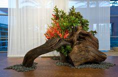 Artist: Sogetsu;;; Ikebana (japanese art of flower arranging)