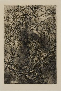 Rodolphe Bresdin, Tree Branches, Undated
