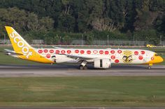 Boeing 787-9 Dreamliner - Scoot | Aviation Photo #2835305 | Airliners.net