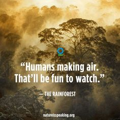 Let's raise our voices and speak for #Nature!  -> http://natureisspeaking.org  #NatureIsSpeaking
