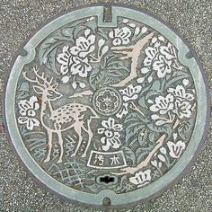 Manhole Cover, hard to get more than one in a photo, but I know someone that has a manhole cover collection.