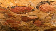 Petición · Ministerio de Cultura: Cierren al público las cuevas de Altamira · Change.org