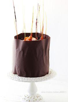 Blueberry cake chocolate orange curd chocOlate cake Chocolate Angel-Food Cake -Recipe from Taste of the South Chocolate Angel Food Cake, Love Chocolate, Chocolate Orange, Mini Cakes, Cupcake Cakes, Food Styling, History Of Chocolate, Caramel, Love Cake
