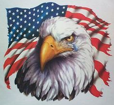 United States Flag Pictures