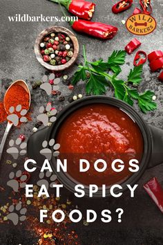 Can dogs eat spicy food? No, dogs should not eat spicy food. Spicy foods can cause a variety of problems for dogs. Spices can cause stomach issues like diarrhea, vomiting, and pain. The spiciness may also lead your dog to be extra thirsty, leading to other health issues like dehydration. In extreme cases, digesting spicy foods can be fatal to dogs. What should I do if my dog ate something spicy? First, check if there is anything toxic in the spicy food your dog ate.If there was something… Can Dogs Eat, Dog Eating, Spicy Recipes, Palak Paneer, Safe Food, Spices, Cases, Foods, Canning