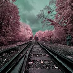 railway to the paradise #photography