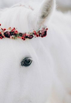 black-wedding-dress-red-flowers-white-horse-floral-crown19