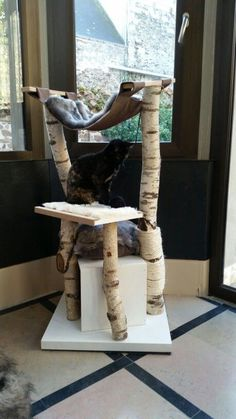 Arbre a chat fait maison en bouleau et MDF - Cat playground outdor - How to create a perfect outdoor play area Wooden Cat Tree, Diy Cat Tree, Cat Trees, Outdoor Cat Tree, Indoor Outdoor, Cat Exercise Wheel, Cat Tree Plans, Cat House Diy, Cat Perch