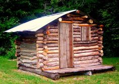The Flying Tortoise: One Man's Dream... Cabin made of fallen timbers