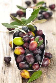 Fresh olives in scoop. - Scoop of fresh green and  black olives with leaves on old wooden table.