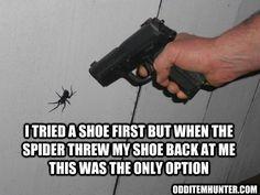 Gun vs Spider