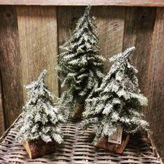 """48 likerklikk, 1 kommentarer – Magnolia (@magnolia_lyngdal) på Instagram: """"Juletre med snø❄ Husk å tagge dine kjøp hos oss med #magnolia_lyngdal ✔ #christmastree #juletre…"""""""