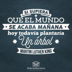 "Vinilo decorativo tipográfico de la frase célebre de Martin Luther King""Si supiera que el mundo se acaba mañana, hoy todavía plantaría un árbol"" Martin Luther King"