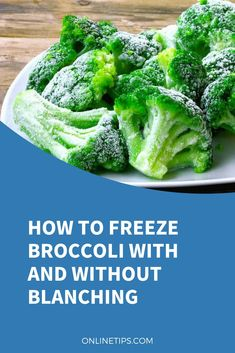 Did your garden gifted you with a nice and fruitful batch of broccoli? You can freeze broccoli without risking its nutrients and flavor. Blanching Broccoli, Frozen Broccoli, Fresh Broccoli, How To Freeze Broccoli, Freezing Broccoli, Freezing Vegetables, Frozen Vegetables, Freezing Celery, Cleaning