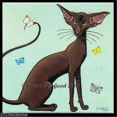 LIMITED EDITION HAVANA ORIENTAL CAT BUTTERFLY PAINTING PRINT BY SUZANNE LE GOOD | eBay