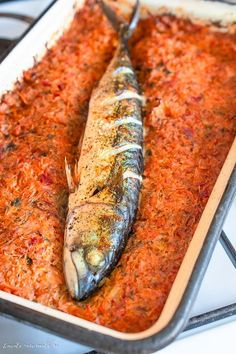 Zucchini, Fish, Vegetables, Funny, Pisces, Vegetable Recipes, Funny Parenting, Hilarious, Veggies