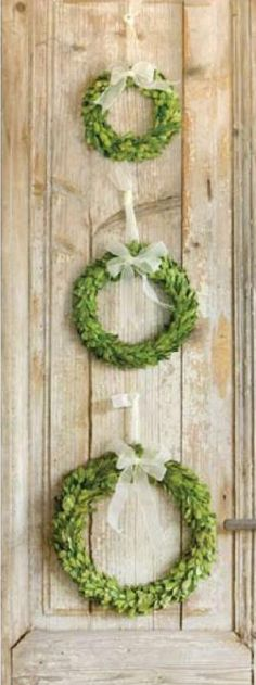 boxwood wreaths tied together with ribbon {or burlap}