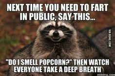"""Next time you need to fart in public, say... """"Do I Smell Popcorn?"""" Then watch everyone take a deep breath..."""